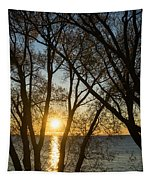 Golden Willow Sunrise - Greeting A Bright Day On The Lake Tapestry
