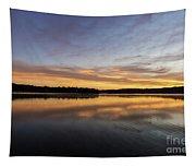 Good Morning Lake Springfield Tapestry