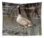 Goose Posing Tapestry