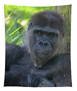 Gorgeous Gorilla Tapestry