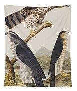 Goshawk And Stanley Hawk Tapestry