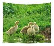 Gosling Shore Side Tapestry