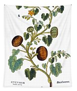 Gourd, 1735 Tapestry