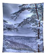 Gracious Winter Tapestry