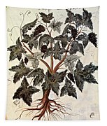 Grapevine, 1229 Tapestry