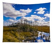 Grassy Waters 3 Tapestry