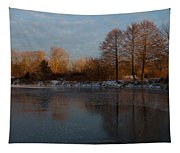 Gray And Amber - An Early Winter Morning On The Lake Shore Tapestry