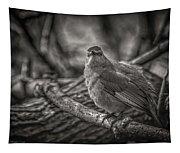 Gray Catbird Tapestry