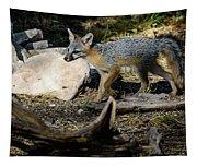 Gray Fox Tapestry