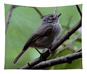Gray Grey Bird 052814a Tapestry