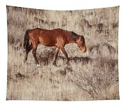 Grazing In The Winter Grass Tapestry