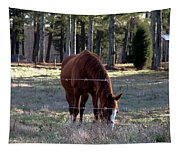 Grazing Tapestry