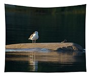 Great Black-backed Gull  Tapestry