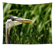Great Blue Heron Portrait Tapestry