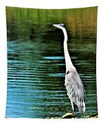 Great Blue Heron Standing Tall Tapestry
