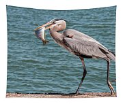 Great Blue Heron Walking With Fish #2 Tapestry
