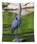 Great Blue Wading The Tuck Tapestry