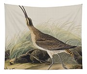 Great Esquimaux Curlew Tapestry
