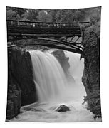 Great Falls In  Paterson Nj Tapestry