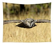 Great Gray Owl In Flight Tapestry