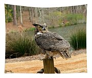 Great Horned Owl 1 Tapestry