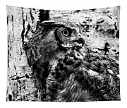 Great Horned Owl In Black And White Tapestry