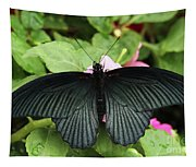 Great Mormon Butterfly Tapestry
