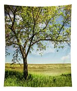 Great Plains Tapestry