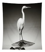 Great White Egret On Hippo Tapestry by Johan Swanepoel