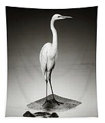 Great White Egret On Hippo Tapestry
