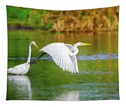 Great White Egrets Tapestry
