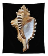 Great White Tooth Tapestry
