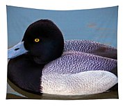 Greater Scaup  Tapestry