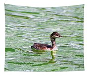Grebe On Green Water Tapestry