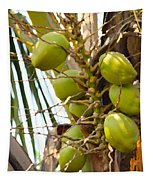 Green Coconut Tapestry