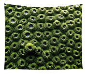 Green Coral Tapestry