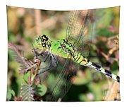 Green Dragonfly Macro Tapestry