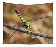 Green Dragonfly On Twig Tapestry