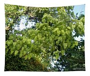 Green Fizalis Plant Tapestry