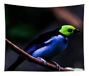 Green Headed Bird Tapestry