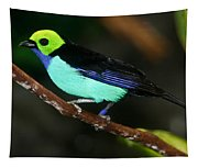 Green Headed Bird On Branch Tapestry