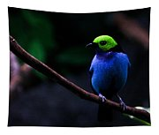 Green Headed Bird Profile Tapestry