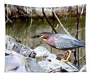 Green Heron . 7d614 Tapestry