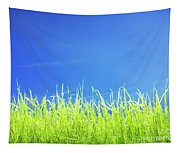 Green Lawn Grass Under Blue Sky Tapestry