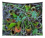 Northern Pitcher Plant Tapestry