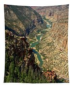 Green River Carving Canyon Tapestry