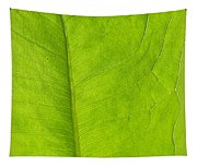 Green Texture Tapestry