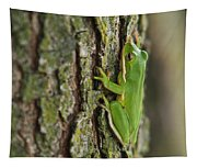 Green Tree Frog Thinking Tapestry