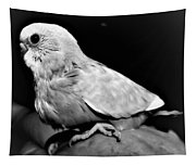 Greyscale Parraket Baby Sitting On Hand Tapestry
