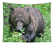 Grizzly Claws Tapestry